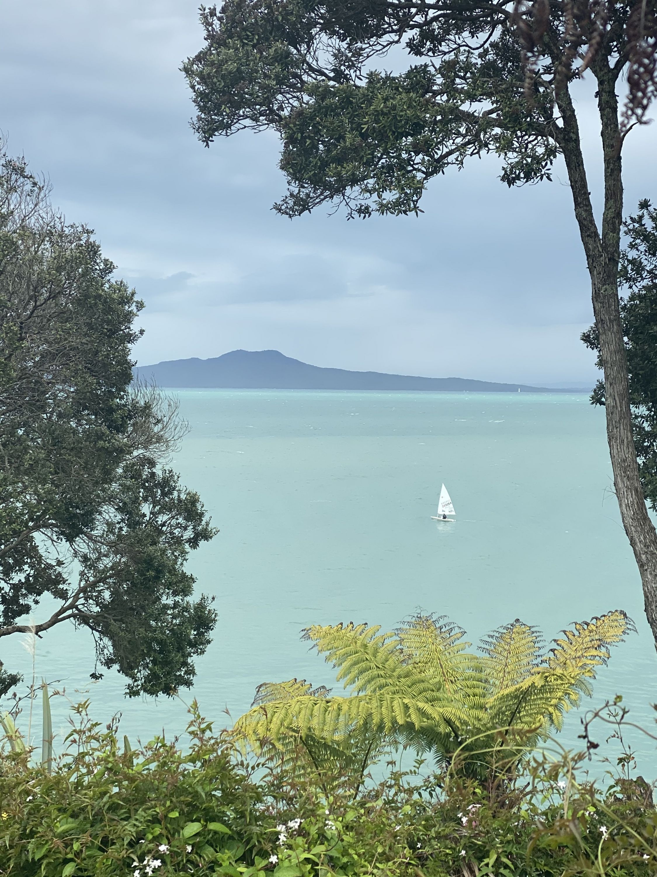 Campbells to Browns Bay by Mike Tennent