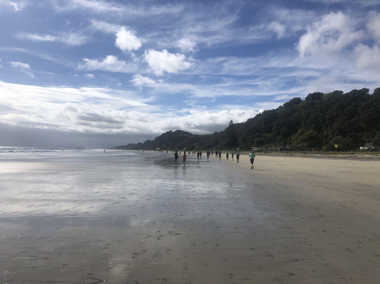 Nga Tapuwae o Toi Trail by Lauren Mai Anderson