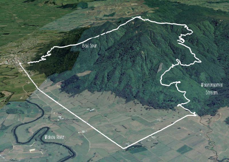 Te Aroha -Waiorongomai Loop